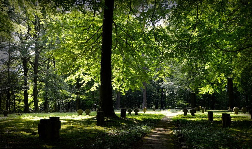 How to Make Eco-friendly Funeral Choices